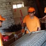 Хамали от Junk.Bg предлагат почистване на тавани и мазета